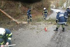 2020-02-04-Einsatz-Sturmschaden-Partenstein-6