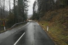 2020-02-04-Einsatz-Sturmschaden-Untermühl-3