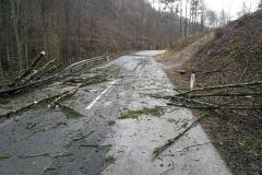2020-02-04-Einsatz-Sturmschaden-Untermühl-6