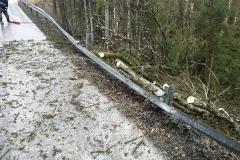 2020-02-04-Einsatz-Sturmschaden-Untermühl-7