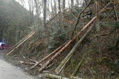 2020-02-04-Einsatz-Sturmschaden-Partenstein-14