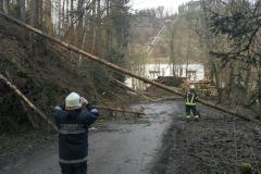 2020-02-04-Einsatz-Sturmschaden-Partenstein-8
