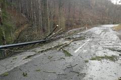 2020-02-04-Einsatz-Sturmschaden-Untermühl-2