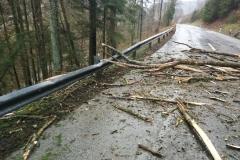 2020-02-04-Einsatz-Sturmschaden-Untermühl-5